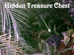 treasure chest hunt